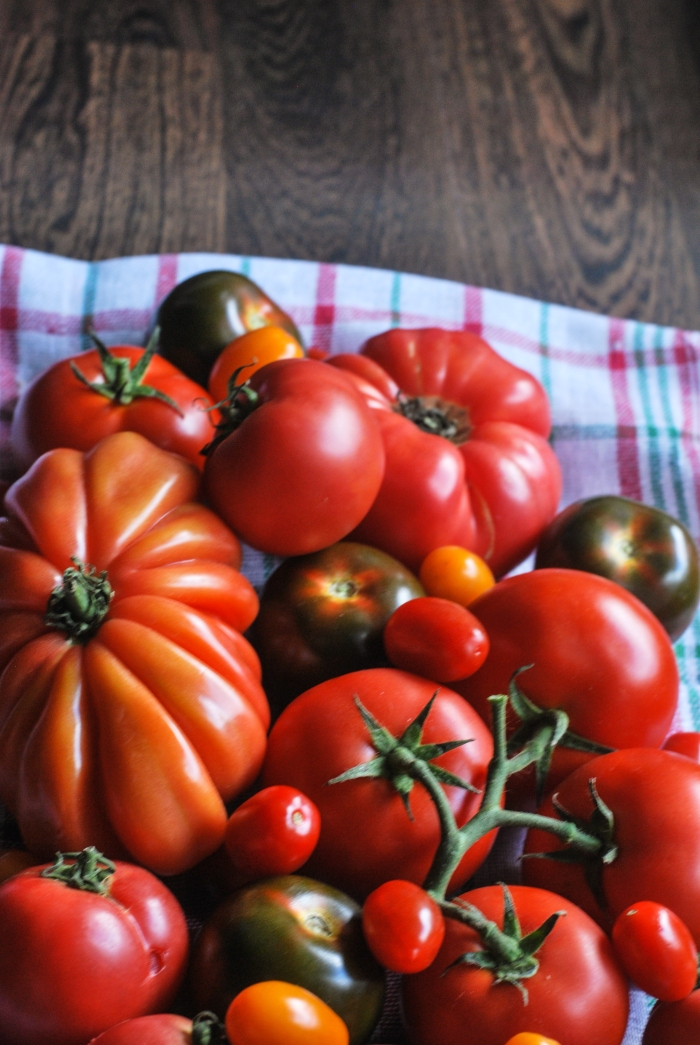 pomidory-13
